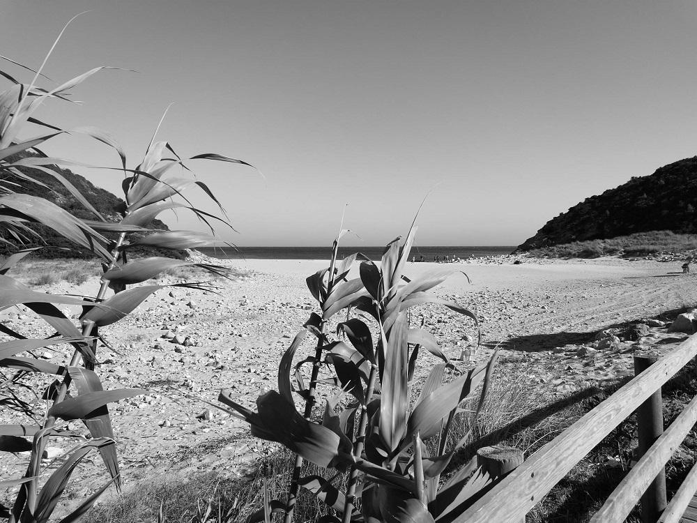 Die Algarve Einsame Strände und ein Traum für Surfer (1)