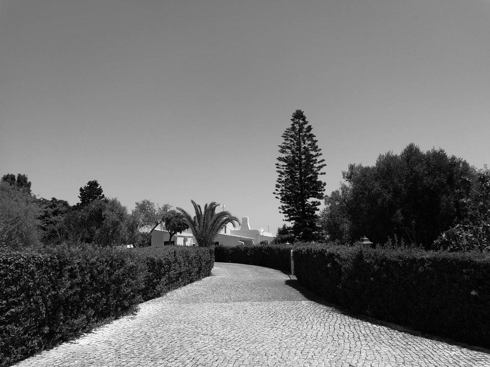 Die Algarve Einsame Strände und ein Traum für Surfer (6)