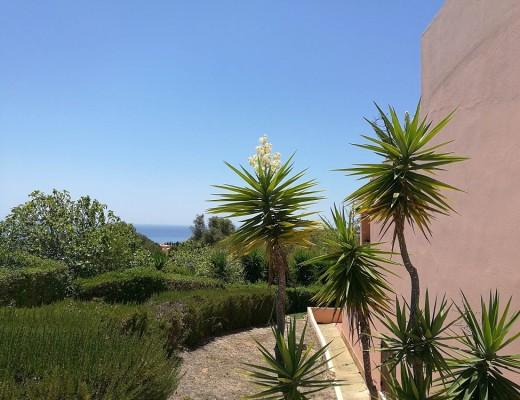Die Algarve Einsame Strände und ein Traum für Surfer (3)